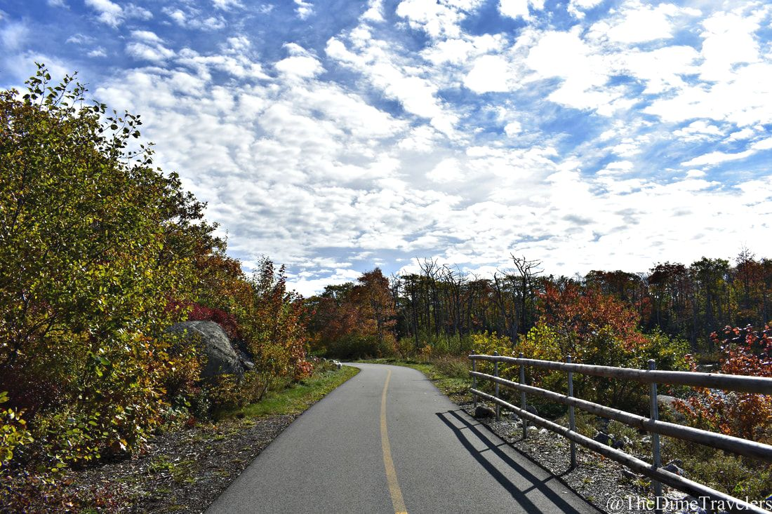 Guide to Halifax things to do in the fall. Walking Trail by the take